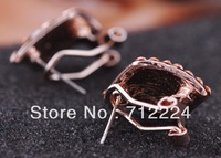 Hot Sale Diamond Zebra Crossing Earrings Elegant Ear Clip Accessories Wholesale