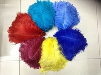 Hot Sale Free Shipping Ostrich Feather , 20-22inch/50-55cm wedding feathers