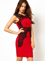 Hot ! 2013 new sexy elegant women lace side back cutout hollow out patchwork sheath slim dress knee-length pencil Dresses 1101
