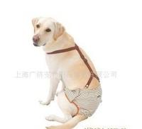 Conjoined pet clothes, pet big dog physiological pants, pants, pet month I