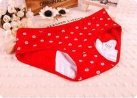 Women's Menstrual Cycle Underwear Cotton Cute