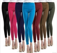 Free shipping! 2013 Hot Sale 10 Colors  Candy Color  High Waist Leggings, Sexy women,Slim Hip Show Thin.Soft Legging.