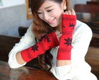 HOT!!2013 New Fashion Glove Snowflakes Fawn Gloves Knitted wool Gloves Long Winter Warm Gloves HTNST-020