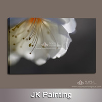 Modern Wall Artwork Painting Printed on Canvas Directly from HD Digital Photo of Flower Whole Sale -- Wall Decore Canvas Art