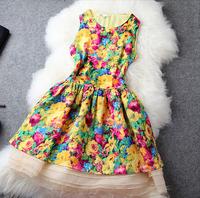 2014 New Summer High quality one-piece dress silk organza elegant women's