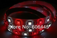 free shipping 24V SMD 5050 RGBW LED Strip RGB+warm white