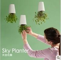 Sky planter seeder flower pot