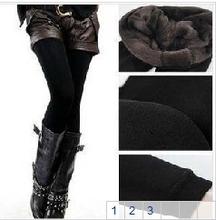 warm legging price