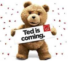 wholesale teddy bear origin