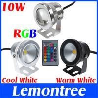 10W 12V RGB Cool White Warm White LED Underwater Light Lamp IP68 Diving Flashlight For Swiming Pool Piscina Aquarium Fountain