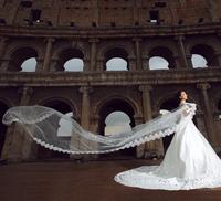 HOT!! Ultra long design bride hair accessory  veil