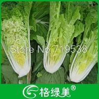 536 sweet vegetable seeds rapreseed 100seeds