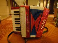 Professional child accordion 8 bass 17 key 8 faggot organ standard musical instruments