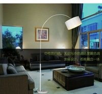 Free shipping new arrival 2014 modern brief fashion floor lamp living room lights bedroom lamp fishing lamp floor lamp