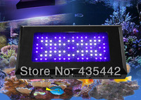 Freeshipping Traditional Blackstar 150w 80x3w reef led programmable aquarium light widely used for