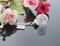 8pcs 20MM Glass Dandelion Real Seed Globe with wish pendant Necklace,Glass Orb Pendant,Hand Blown, Glass Globe GGJ-GJN-031