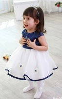 Free Shipping Children's Baby Girls Classic Crown Princess One-Piece Dress Girls clothes Dresses 1PCS/LOT