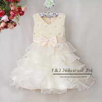 Arrival Baby girl Christmas Dress rose slip Dress Kid party girl layered Dress cotton and polyester dress GD31115-9
