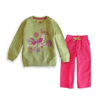 Spring-Autumn Children's suits, jackets and pants children's clothing girls fleece sweater, baby girls v-neck velvet two-piece