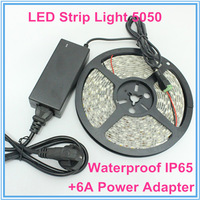 1pcs LED Strip Flexible Light 5050 SMD 300LEDs 5M/Roll Waterproof IP65 Red Green Blue Yellow White+12V 6A Power Supply