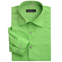 Spring thin men's clothing long-sleeve shirt 2013 formal male shirt green solid color men's easy care shirt