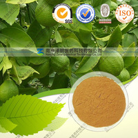 Natural Psidium Guajaval Extract / Guava Leaf Extract / 20:1