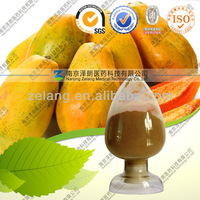 Papain, Papaya extract powder, papain enzyme 1000000u/g