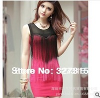 2013 new European and American winter tassel sexy mesh Slim package hip dress dress women dresser