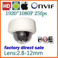 Popular Vandal-proof IP  Megapixel Camera IR  HD Dome IP Camera IP66 Waterproof Outdoor Camera 1920*1080P