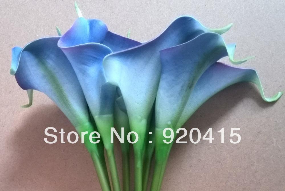 blue calla lily flower images. Black Bedroom Furniture Sets. Home Design Ideas