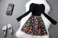 European High Street Fashion Women's Long Sleeves Colorful Floral Print Patchwork A Line Dress