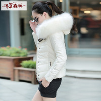 Short design wadded jacket female outerwear cotton-padded jacket small cotton-padded jacket vanilla 2013 winter new arrival