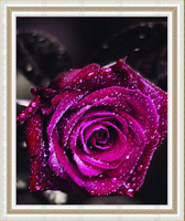 Free shipping DIY diamond painting diamond cross stitch kit Inlaid decorative painting Diamond embroidery Purple rose DM1203016