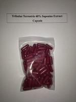 FREE SHIPPING Worldwide            Pure Gokshurai Tribulus Terrestris Extract 400 mg x 1000 Capsule, 40% Saponins