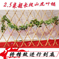 2.5 meters 140 parthenocissus decoration plants rattails dried flowers