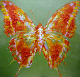 Free shipping Wall frame Hand painting  Home decoration  The colorful The butterfly   40CM*40CM*3CM