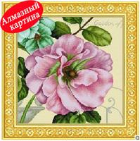 Free shipping DIY diamond painting diamond cross stitch kit Inlaid decorative painting Diamond embroidery  flowers DM1203027