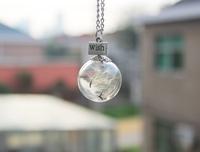 1pcs 20/25MM Dandelion Real Seed Glass Bulb Wish Necklace, Dandelion Seed Necklace Make A Wish GGJ-GJN-034