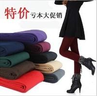 promotion!!! women fashion capri pants fleece inner,warm  pants,capri 8 colors,Free shipping