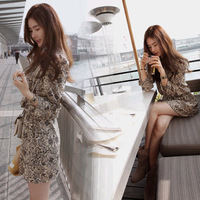 2013 summer vintage print casual all-match breathable cool and refreshing chiffon one-piece dress women's