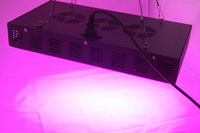 Wholesale 300W LED Grow Light 100*3W Dropshipping Hot selling full Spectrums IR Indoor Hydroponic System