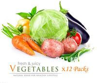 20 Varieties Garden Vegetable Seeds Heirloom Emergency Survival Seeds SCTC004