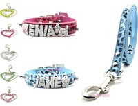 Free Shipping 3PCS Pet Set (Leopard Dog collar+Dog Leash+Pet ID tag) 2 Different Color Brand-new (Free 6 letters &1 charm)