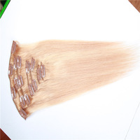 Wholesale Remy Hair,Clip-In Hair Extensions ,Colour 27#,Straight,Virgin Brazilian Hair ,Free Shipping