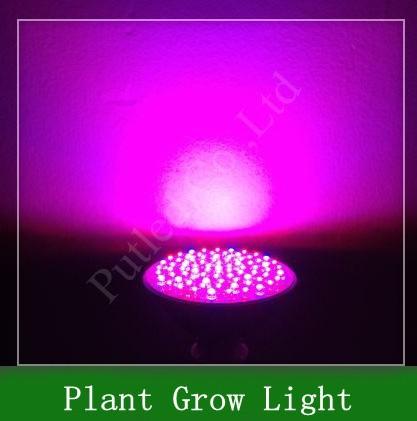 Светодиодная лампа E27 f5 80LED 220 2