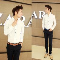 2013 autumn men's clothing shirt male long-sleeve shirt long-sleeve slim casual shirt male shirt