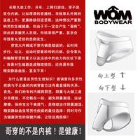 Free Shipping Male belt panties male bag panties belt triangle panties