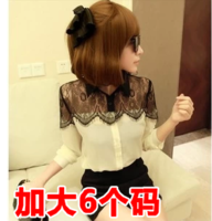 Fashion autumn princess 2013 black lace small long-sleeve chiffon shirt c312