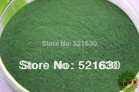 Free shipping Spirulina powder food small fish tropical fish 100g &mini fish foods for wholesale