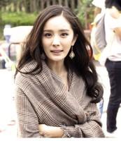 2013 fashion little brown check tassel cotton plaid cape scarf